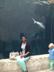 Heree I am sitting pretty at the shark tank.